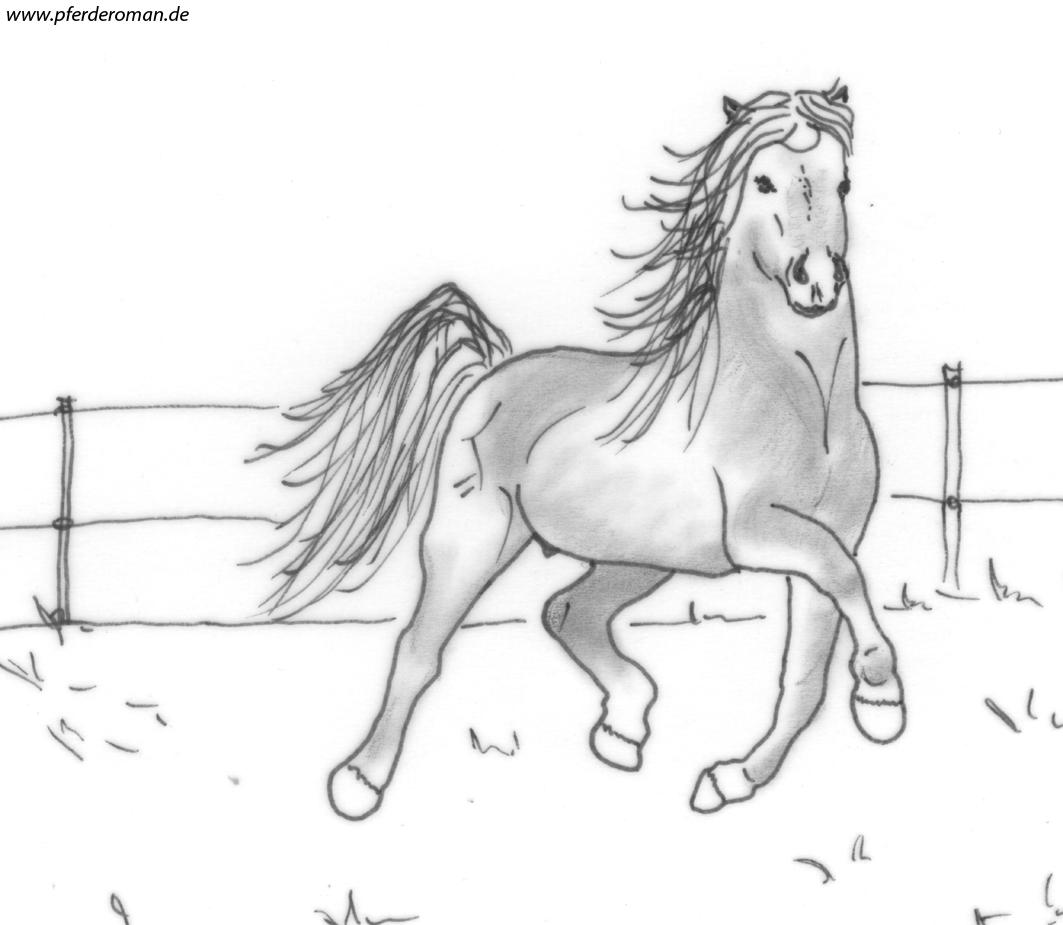 pferdebilder zum ausmalen